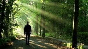 Counseling con l'Esperienza Immaginativa