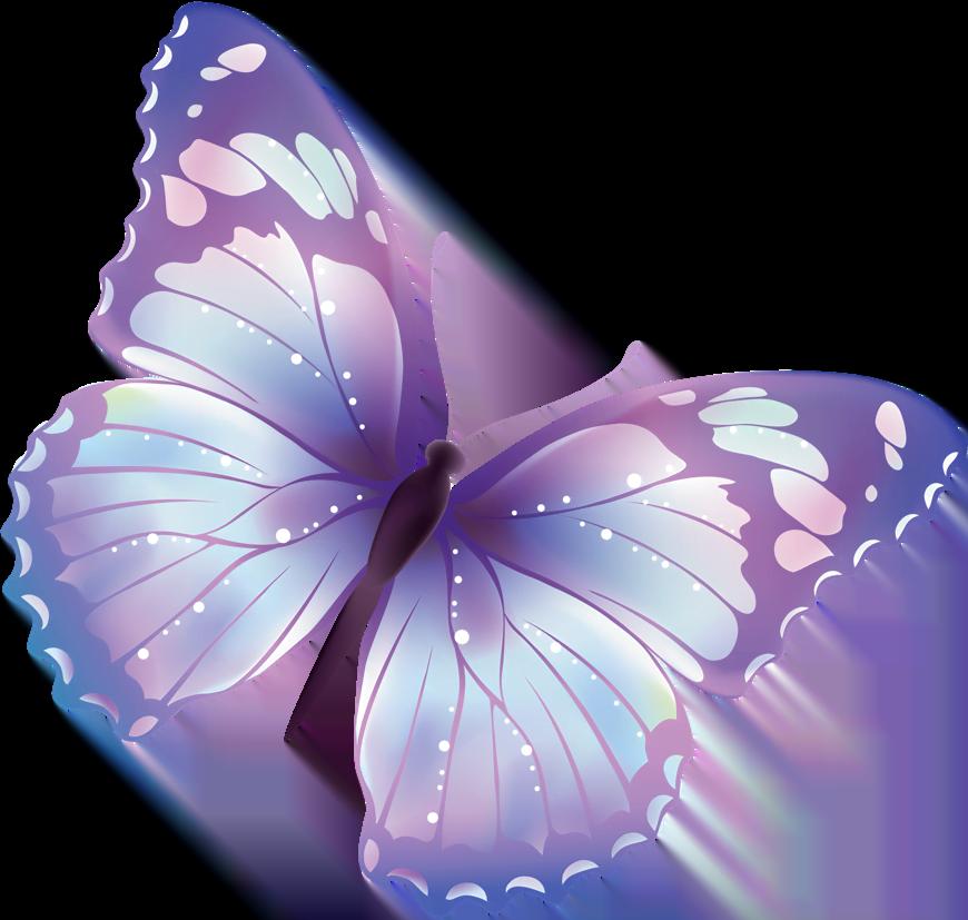 Il simbolo della Farfalla - Psicologo Online
