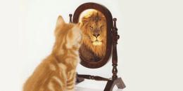 Psicologo Online - Potenziare l'Autostima