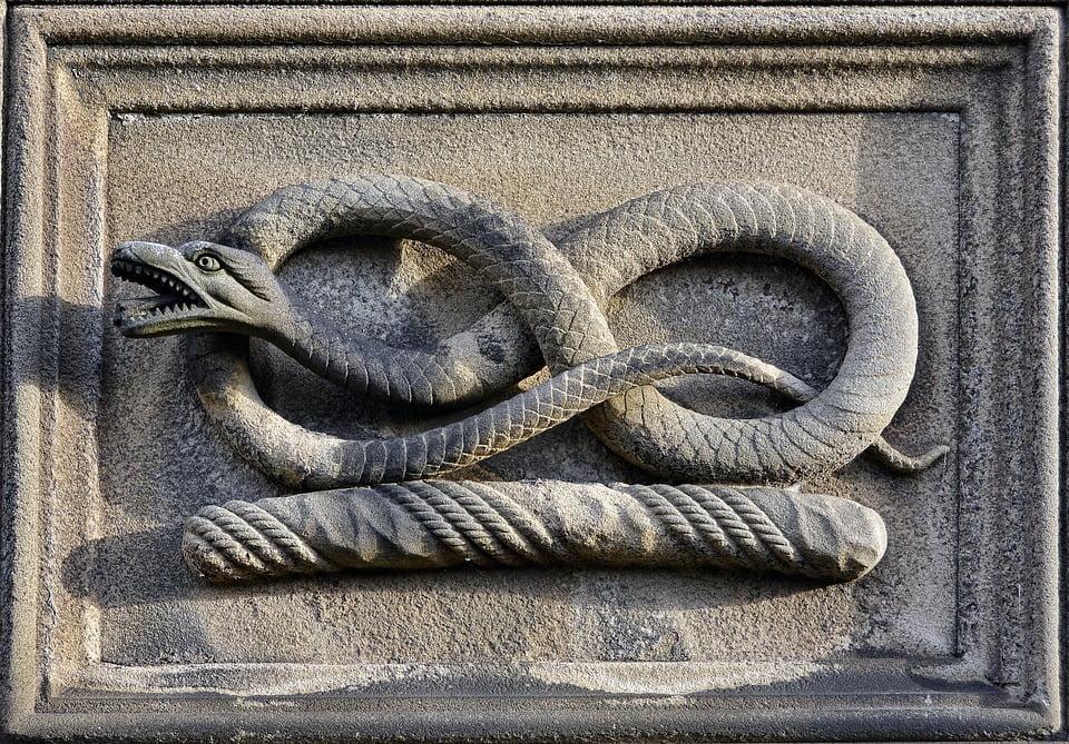 Simbolo del Serpente - Psicologo Online