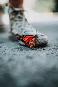 Resilienza Psicologica - Psicologo Online